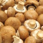 Ricette Funghi Champignon